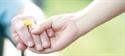 Cuidados paliativos: el enfermo tiene derecho