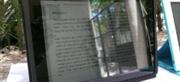 Protectores de pantalla antibrillo, que la luz no sea un problema